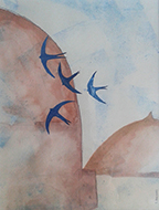 Swallows in North Africa